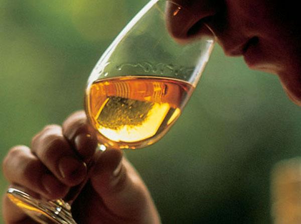 600-2-viski-tadim-rehberi-1-bolum